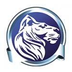 Löwenstark Online-Marketing GmbH